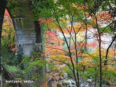 夫婦岩の紅葉1