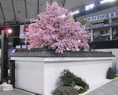 テーブルウェア 4_convert_20110205225237