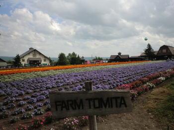 f_tomita3