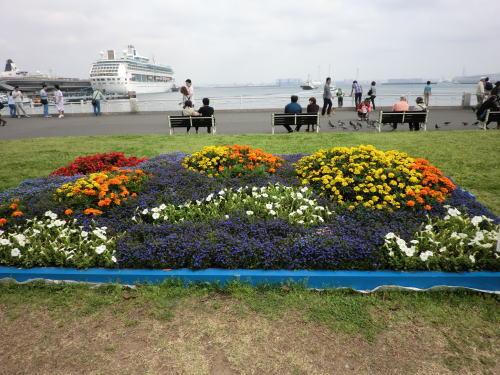 flower20120506_6