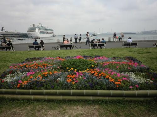 flower20120506_7