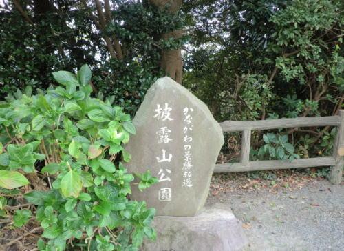 hiroyama_p1