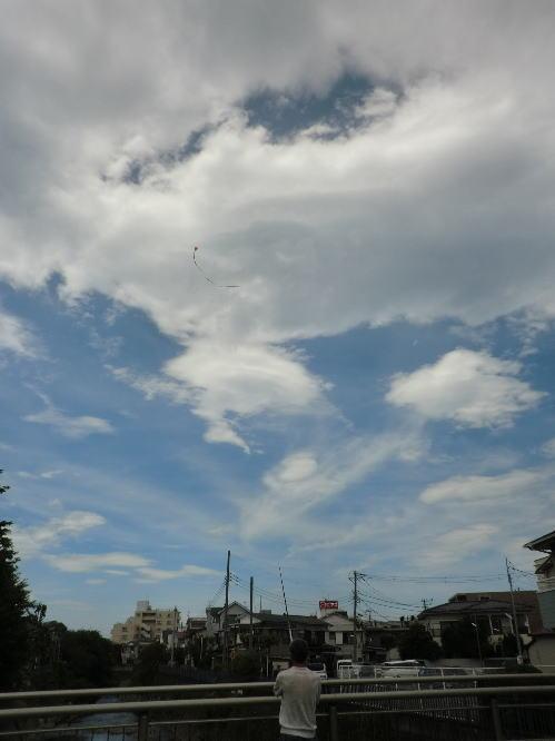 kite_5