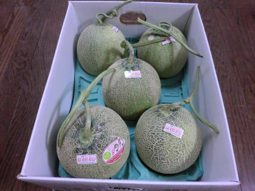 melon_201208_1