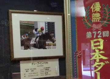 n_horse_p8