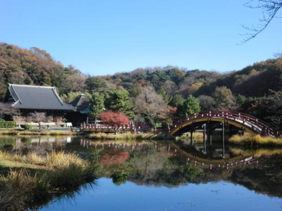 shomyoji201112_1
