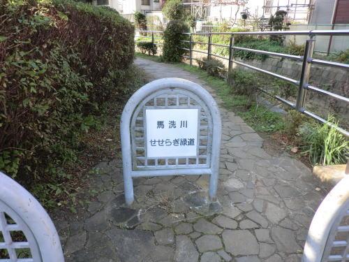 umaarai_r3