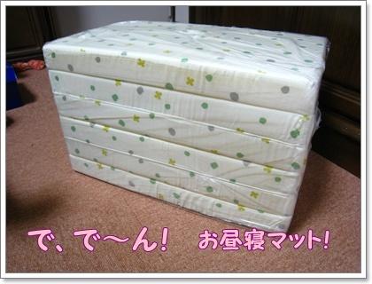 144_20100801143342.jpg