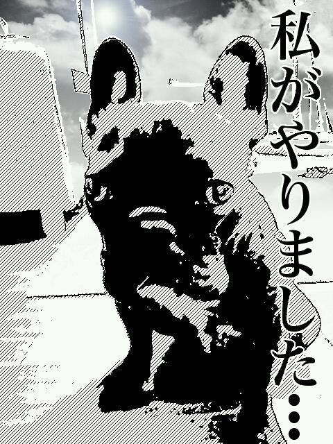 manga_3.jpg