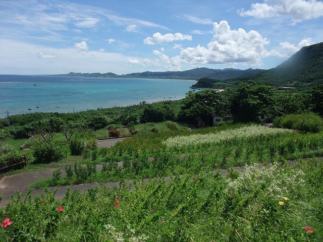 石垣島 038