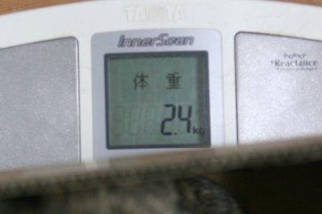 201302_taiju_suzu.jpg