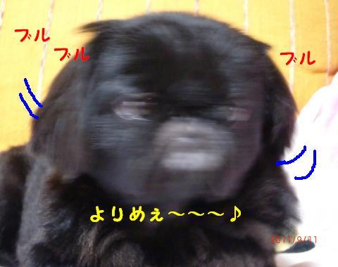 (*`▽´*) ウヒョヒョ