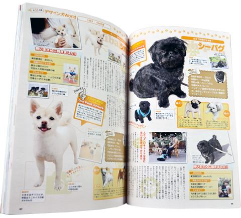デザイン犬図鑑 シーパグ くろすけ