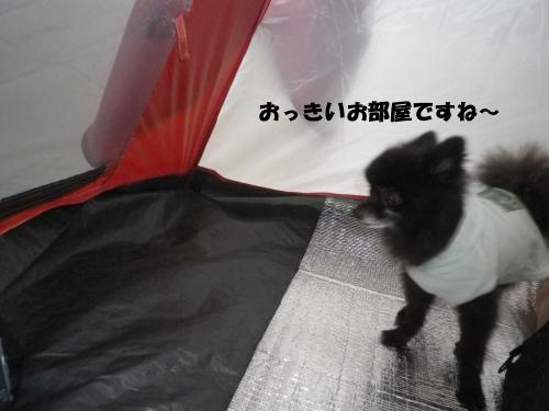2012-09-25-1+018_convert_20120926091725.jpg