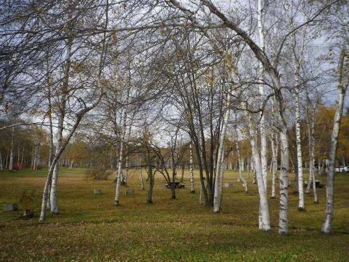 2012-10-30-1+001_convert_20121030184929.jpg