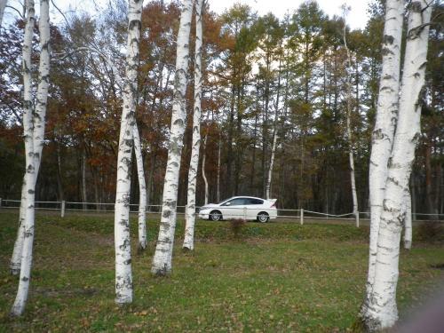 2012-10-30-1+018_convert_20121030185523.jpg