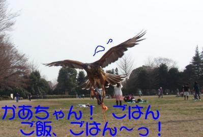 3-21-1-1_.jpg