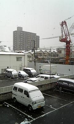 2011.2.11  久しぶりの雪