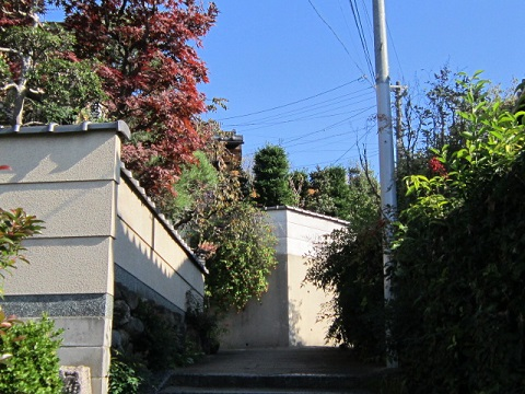 170-7.jpg