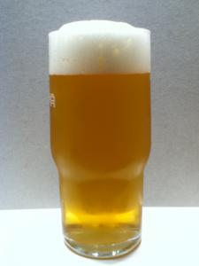 Maccabee Lager03