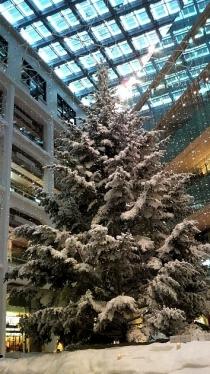 クリスマス2013前夜1-02