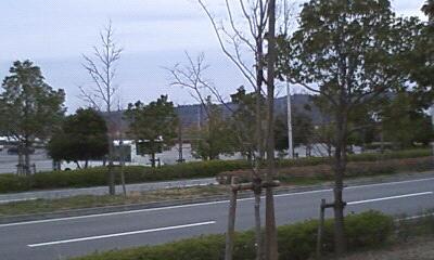 20110320_134929.jpg