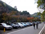 2011-11-13-0001.jpg