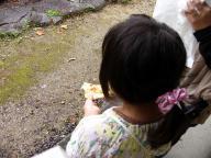 ぷに子とパリワールのナン