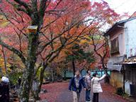 岩屋堂の紅葉