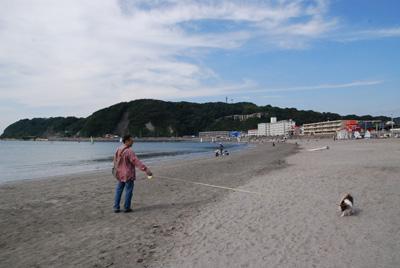 秋の逗子海岸
