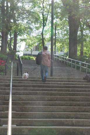 階段昇り-の