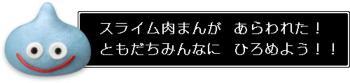 ti_06.jpg