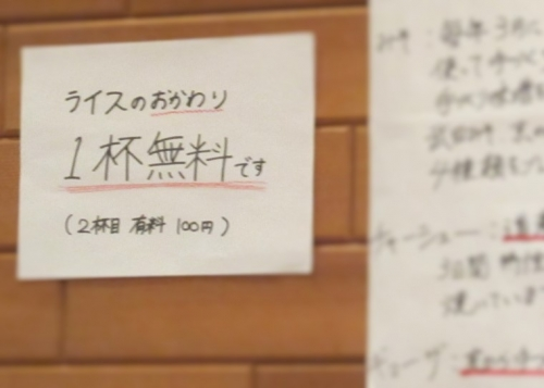 どさん粉麺や凡⑤ (8)