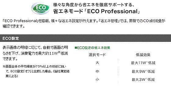ECO_Pro.jpg