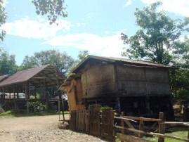 タオプン村4