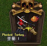turkey24.jpg