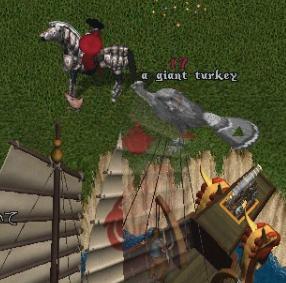 turkey9.jpg