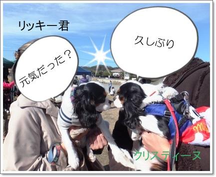 blg13christenesatooyakai1201F7160.jpg