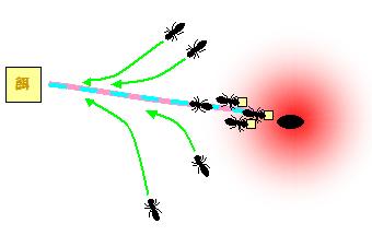 ant_r4