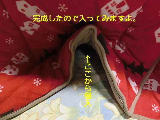 14CIMG0378.jpg