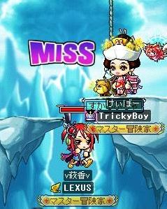 Maple100708_みす
