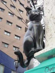 Chat noir3