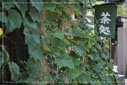 18_20110729130256.jpg