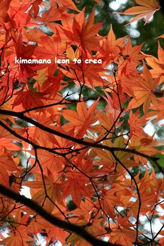 7_201311100122436da.jpg