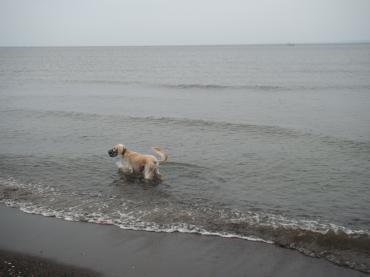 海はいいねぇ