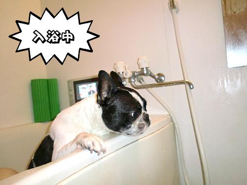 お風呂大好き♪