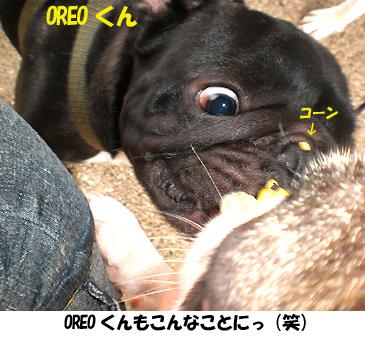 OREOくん