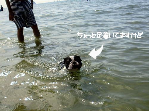 泳いでる風(笑)