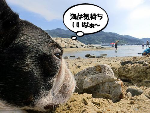 まったり過ごす浜辺です