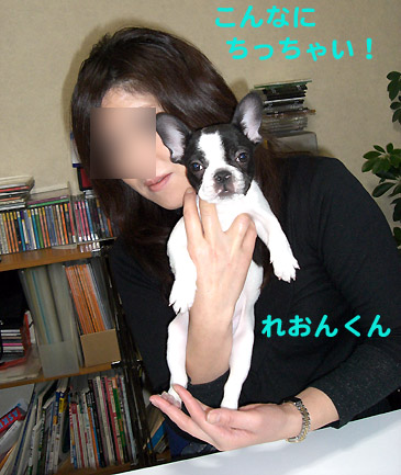 img20080131_1.jpg